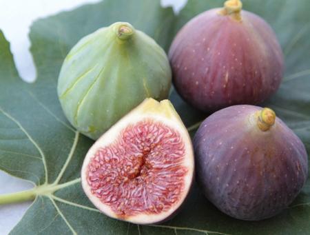 fig leaf: Delicious figs on a fig leaf.