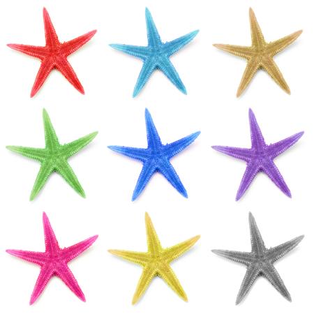 Colorful seastars, isolated on white background. photo