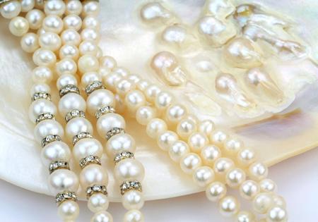 perlas: Collar de perlas de perlas naturales en una concha de ostra