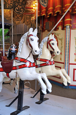 Carousel horse in the amusement park. 写真素材