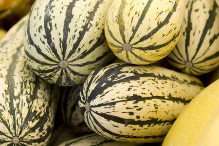 Pile of green and black striped delicata squash.