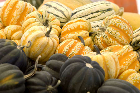Piles of squash at the market, orange carnivals are in focus. Stock Photo
