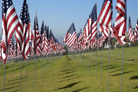 Hundreds of US flags stuck in a field of green grass under a blue sky. Imagens