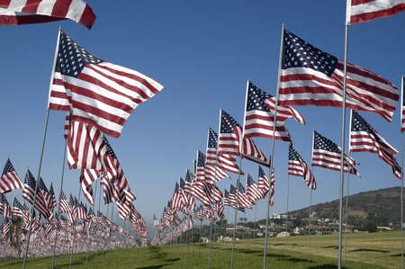 Several rows of US flags against a blue sky. Imagens
