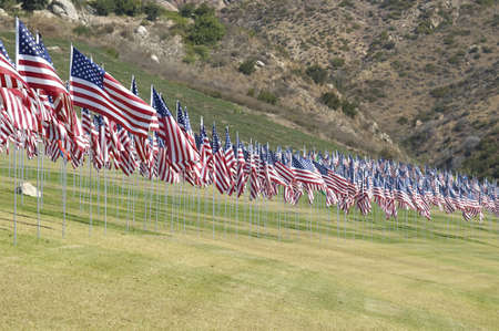 Rows of United States flags form an arc. Imagens