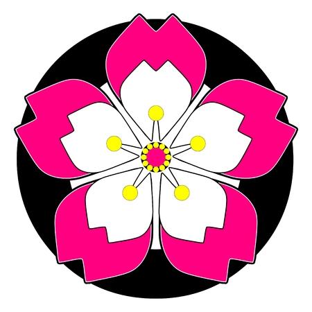 flor de sakura: sakura flor