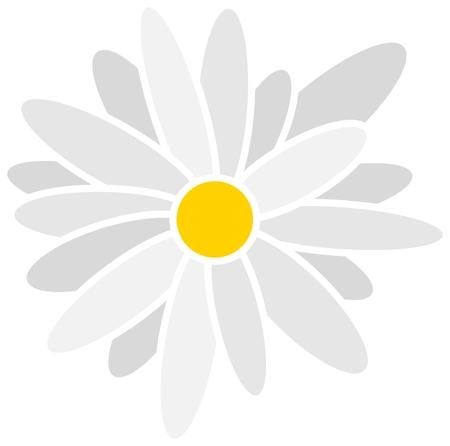 chamomile tea: daisy, chamomile, white daisy, daisy pattern, daisy icon Illustration