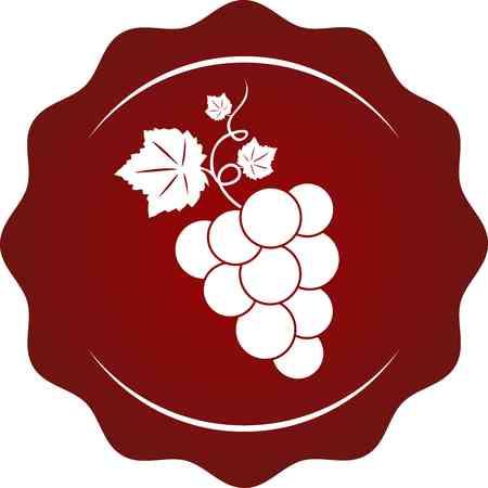 blanc: vid vino vi�edo de uva Vectores
