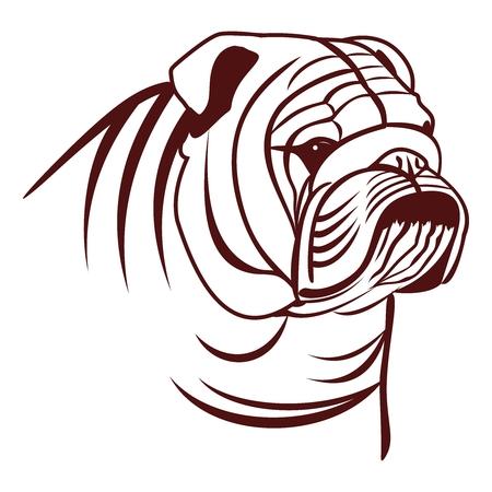 english countryside: English Bulldog Illustration