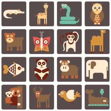 animal: Animal icon