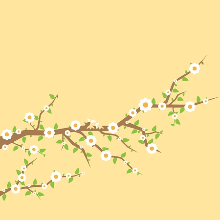 cherry tree: Floral wallpaper