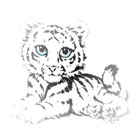 blue eyes: Vector Cute Tiger Cubs Pencil Sketch with blue eyes