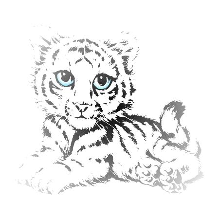 silueta tigre: Vector lindo Cachorros de tigre del bosquejo del lápiz de ojos azules Vectores