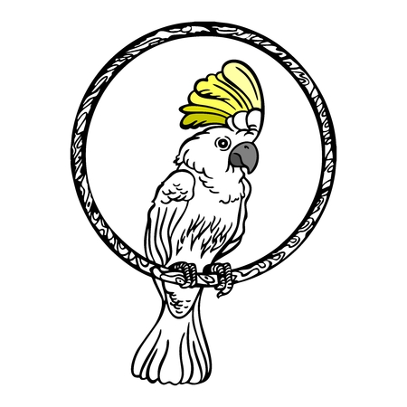 cockatoo: Vector White Cockatoo Standing on a tree ring Illustration