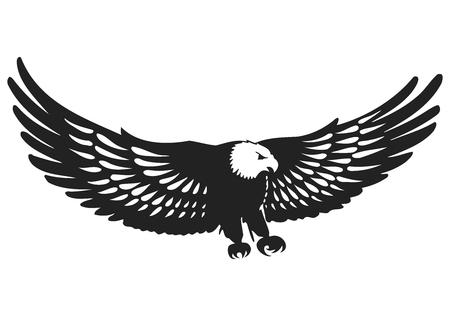 flying kites: Vector Elegant Flying Eagle Silhouette Illustration