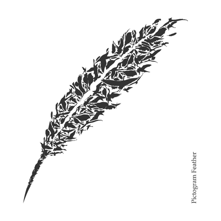feather pen: Vector Stylish Feather Pictogram Ornament