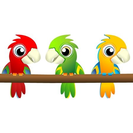 periquito: Vector Macaw lindo de la historieta en tres colores diferentes