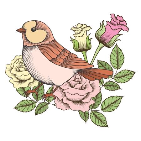 pajaros: gorrión vector vendimia con la ilustración de rosa