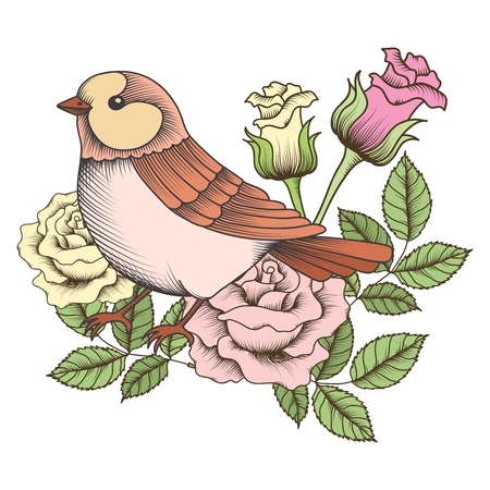birds in tree: Vector vintage sparrow with rose illustration