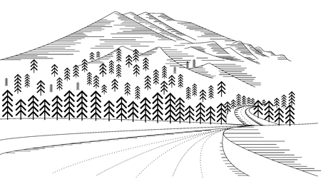 snow mountain: Vector Rural Landscape Illustration, snow mountain, pine tree and road cover with snow