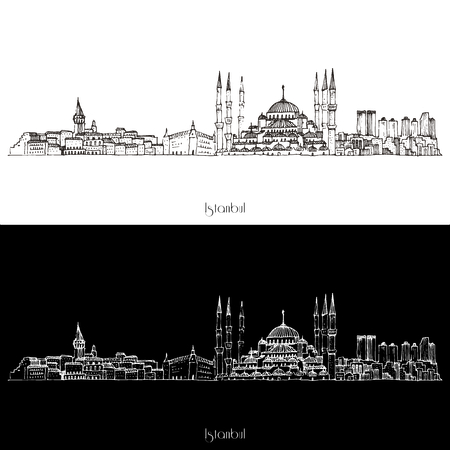 city landscape: Vector Instanbul City Skyline Illustration isolated on white