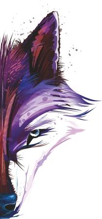 cuadros abstractos: Vector Resumen Lobo Illstration en estilo de la acuarela