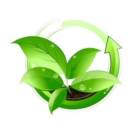 Vector Plant Cycle Symbol Icon isolated on white background