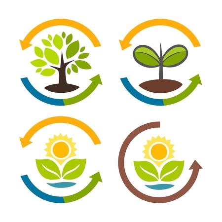 nutrientes: Vector planta de ciclo icono del símbolo, en una colección Vectores