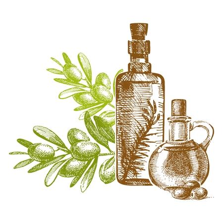 olive oil bottle: Vintage Olive Oil Bottle Illustration, with olive branch