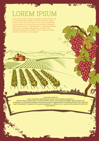 associated: Vector Vintage Vineyard Associated Flyer Template Illustration