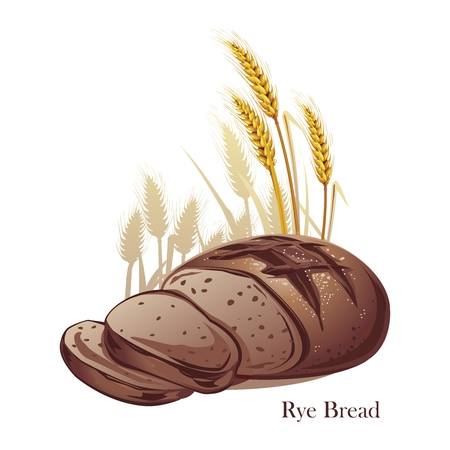 Vector Rye Bread Illustration with Grain Background Illustration