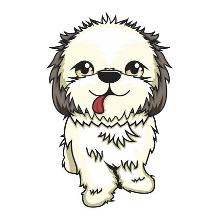 pekingese: Vector Cartoon Shih Tzu Dog Illustration isolated on white background Illustration
