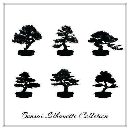 asian gardening: Vector Bonsai Tree Silhouette Illustration isolated on white