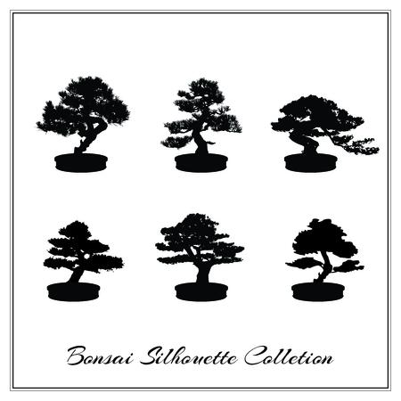 Vector la ilustración de la silueta del árbol Bonsai aislado en blanco Ilustración de vector