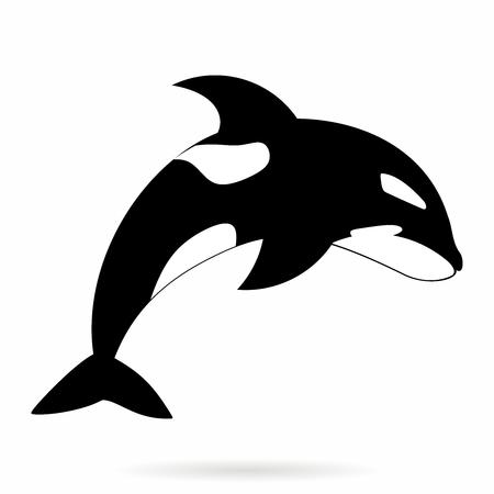 Vector monocromo Simle Orca, orca Ilustración de contorno aislado en el fondo blanco