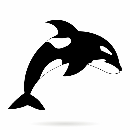 Vector Monochrome Simle Orca, Killer Whale Outline Illustration isolated on white background