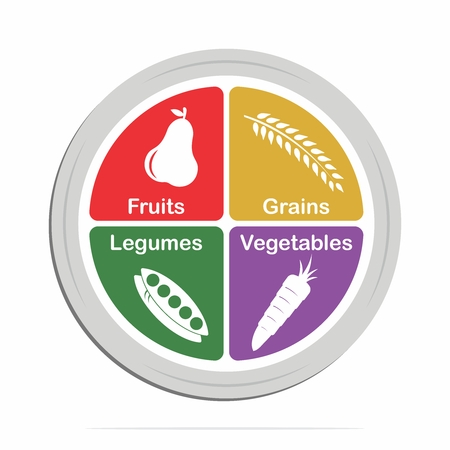 Vector Infographic of Healthy Vegetarian, Vegan Assorted Food Plate