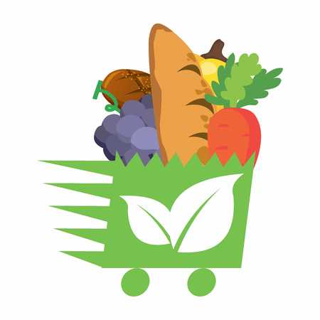 Vector Organic Grocery Basket Illustration with fruits and breads
