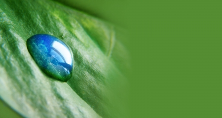 A waterdrop is on a leaf with the reflection of the sky and clouds in the water drop. The green right side of the can be used for copyspace and text.