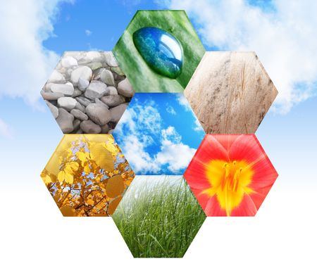 An abstract hexagon symbol has rocks, a water drop on a leaf, wheat, a bright flower, green grass and yellow fall leaves on a tree in the shapes.  Stock Photo
