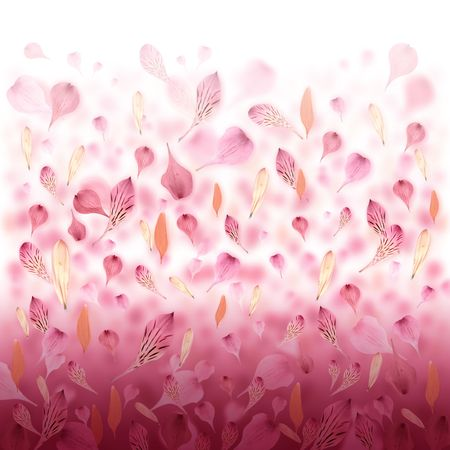 Pink and red flower petals are falling creating a love valentine background. Can also be used for an abstract background for Mothers Day, an anniversary or beauty concept.