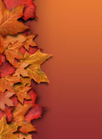 accion de gracias: Una naranja, rojo ca�da frontera de fondo para la temporada