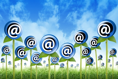 signify: Email Flowers are sprouting for a internet, newsletter inbox contact theme  The flowers have an at symbol to signify an email address  Also use it for a spam or marketing concept