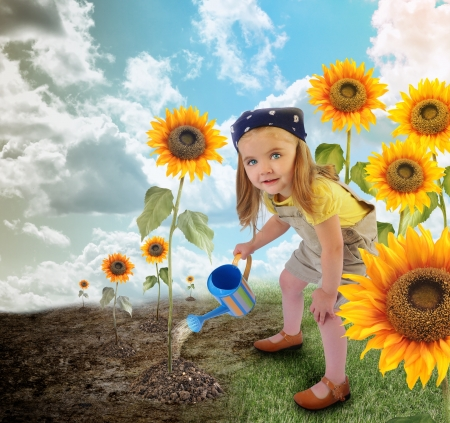 conserve: A young little girl is watering suflowers in a field garden  One side is dry, the other side is in full bloom for an enviornment or nature concept   Stock Photo