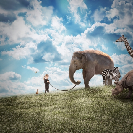 follow the leader: A young girl is walking a big elephant on a wild landscape with other animals following on a path to protection or freedom. Stock Photo