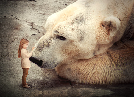 A little girl is petting a polar bear and the big, wild animal is looking at her  Use it for a peace or conservation concept  Stock Photo
