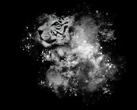 Een witte tijger met blauwe ogen geïsoleerd op een zwarte achtergrond met artistieke verf splatters rond voor een creativiteit of kunst concept.
