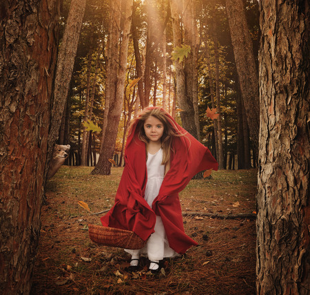 A little girl is standing as little red riding hood in the forest with a wolf animal hiding behind trees for a fear or fairytale concept.