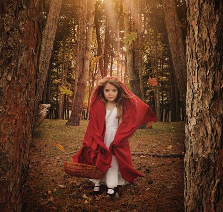 Una bambina è in piedi come Cappuccetto Rosso nel bosco con un nascondiglio lupo animale dietro gli alberi di una paura o un concetto favola.