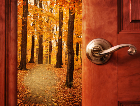A door is opening into a beautiful forest with autumn leaves and a path trail with sunshine in the sky for an escape or dream concept. Stock Photo